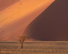 Africa and Namibia Photography