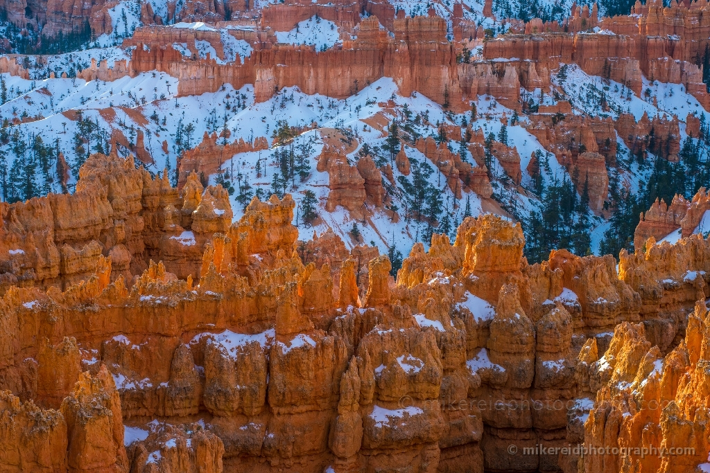 Bryce Canyon Photography Afternoon Golden Light