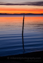 Birch Bay Lone Piling To order a print please email me at  Mike Reid Photography : sunset, sunrise, seattle, northwest photography, dramatic, beautiful, washington, washington state photography, northwest images, seattle skyline, city of seattle, puget sound, aerial san juan islands